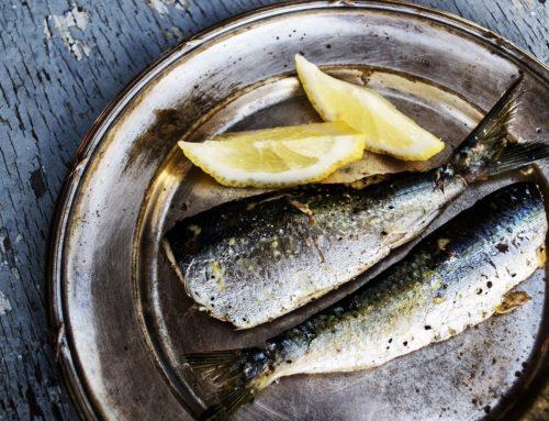Quels poissons pour quelle saison : notre sélection
